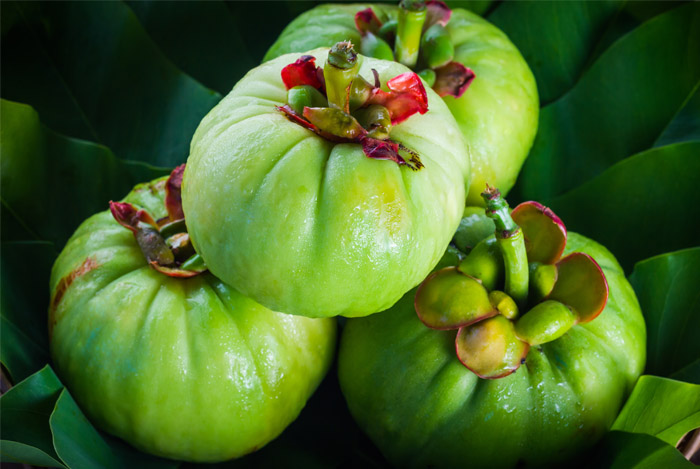 garcinia-cambogia-health-fitness-greece